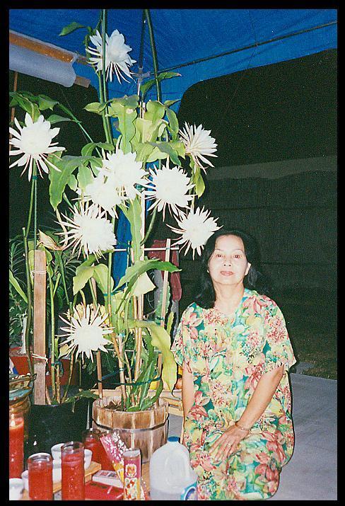 mom1008